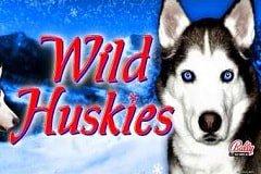 Wild Huskies Slots