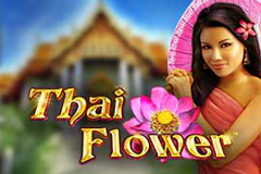 Thai flower slots online free gambling bus tours available