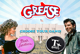 Grease Pink Ladies & T-Birds