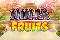 Ninja Fruits Slot