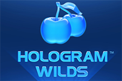 Hologram Wilds Slot